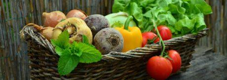Źródła białka w diecie wegetariańskiej